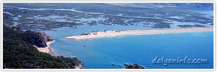 Dalyan_iztuzu_Beach